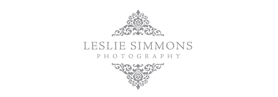 Leslie Simmons Photography Blog logo